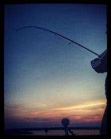 badfish3