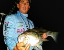 badfish2